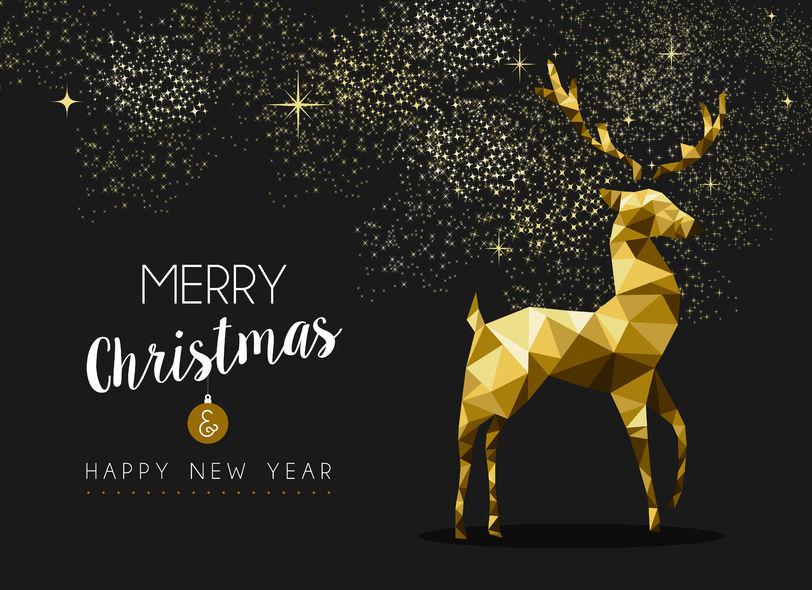 Joyeux Noël et meilleurs voeux pour 2016 !